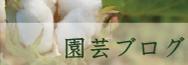 綿・リネン栽培ブログ