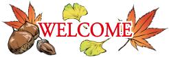 タオル・リネンの通販,シェルブラン,国産タオル,通販,即日出荷,11月,秋,紅葉,栗