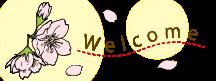 タオル・リネンの通販,シェルブラン,国産タオル,通販,即日出荷,3月,4月,春,桜,花見