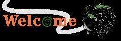タオル・リネンの通販,シェルブラン,国産タオル,通販,即日出荷,8月,夏
